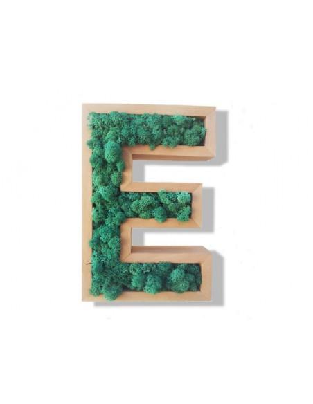 Alphabet Végétal